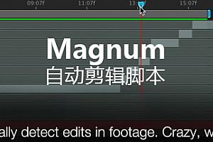 【AE脚本】AE自动剪辑分段脚本 Magnum v3.3.2 + 视频教程