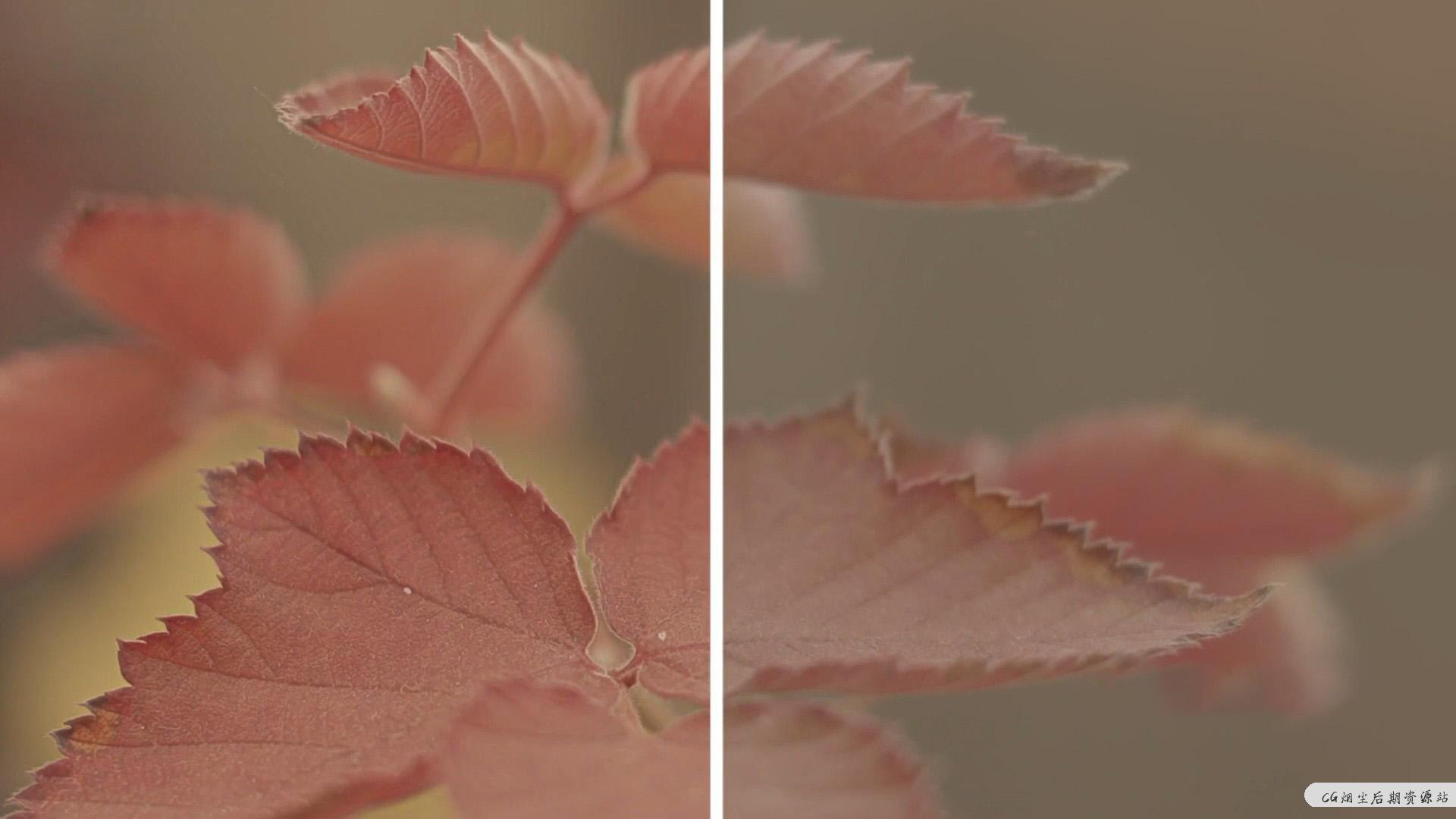 fcpx插件 视频图像锐化工具画面清晰度增强插件 Image Sharpener
